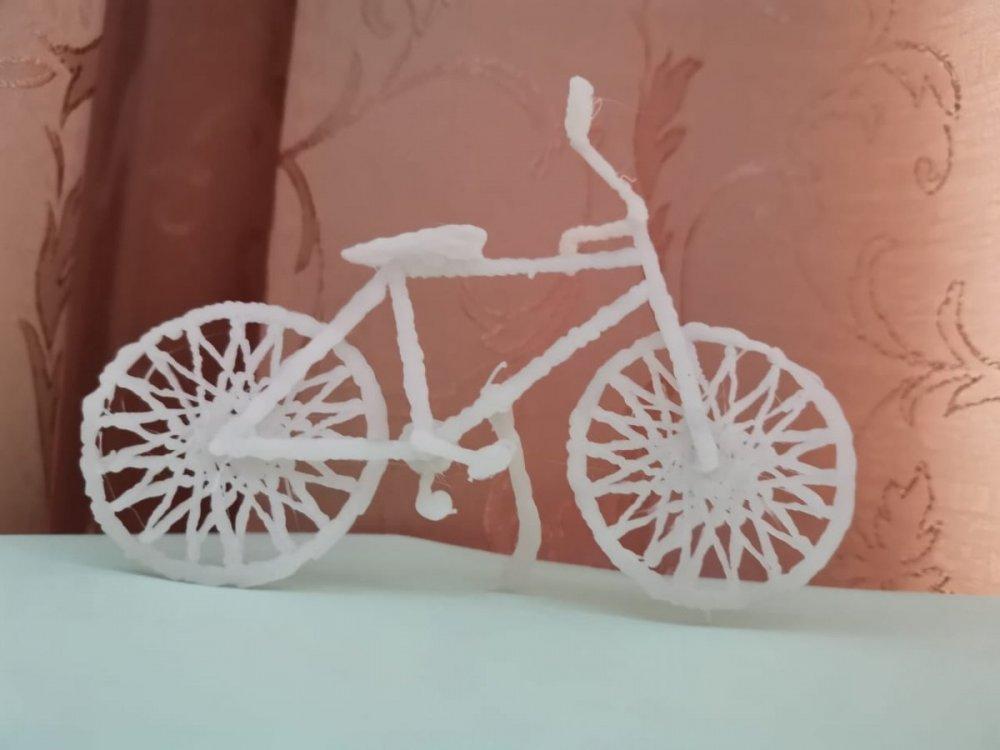 Велосипед Медведева Дарья.jpg